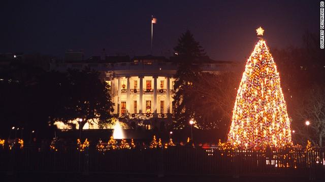 6. Национальная рождественская елка (Вашингтон, округ Колумбия)