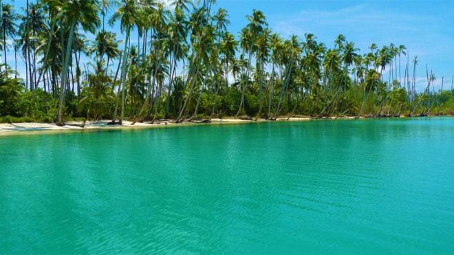 зеленая вода
