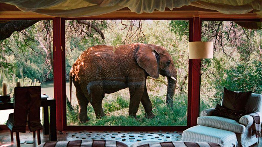 Makanuane Safari Lodge