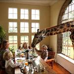 Отели, где дикие животные чувствуют себя как дома