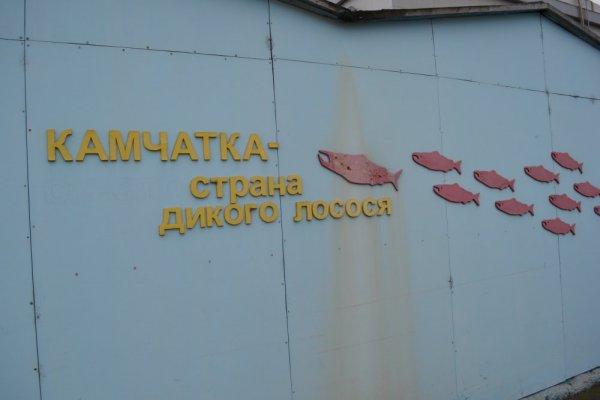музей лосося 4