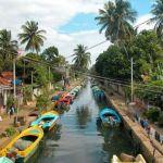 7 причин поехать в Шри-Ланку