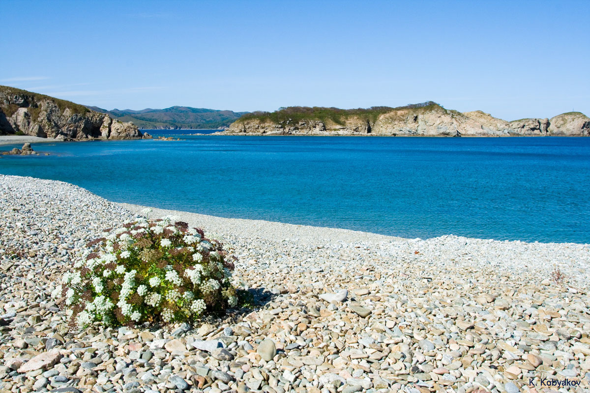 пляж морского заповедника