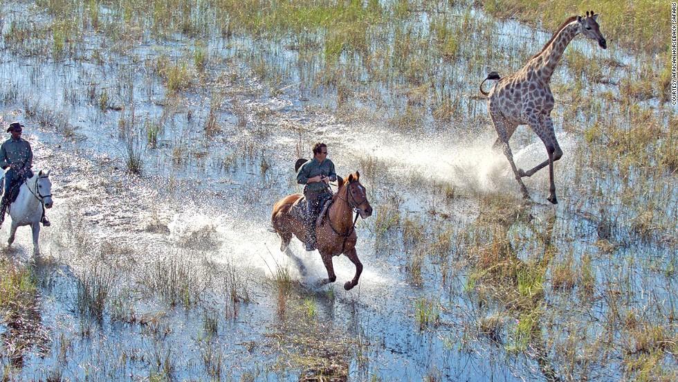 African Horseback Safaris (Ботсвана)
