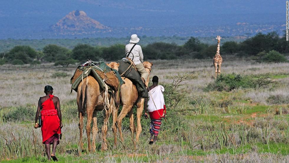 Karisia Walking Safaris (Кения)