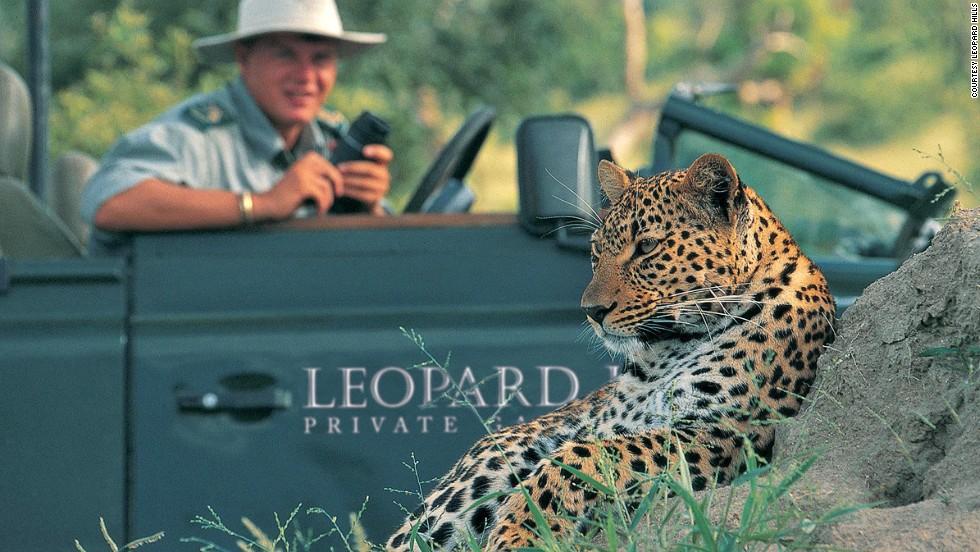 Leopard Hills (Южная Африка)