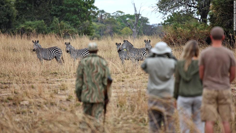 Norman Carr Walking Safari (Замбия)