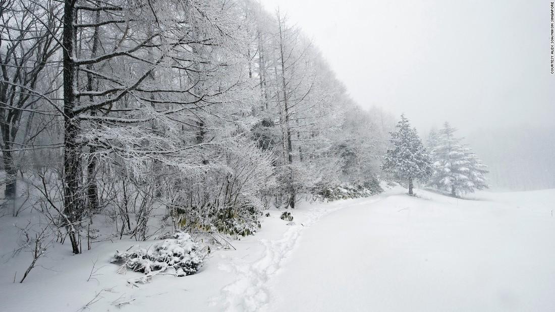 фото зимой 6