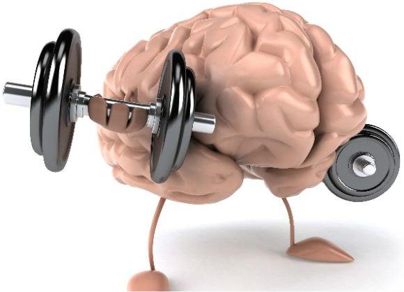 Тренируйте мозг.